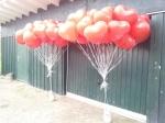 In Schermbeck ließen wir Ballons zur Hochzeit fliegen