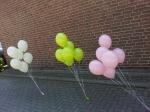 Ballons zum Fotoshotting in Velen